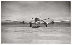 (Ephemera) New Zealand National Airways Corporation's DH 114 Heron at Blenheim airport, March 27th, 1953. B&W photo with technical details verso. 9x14 cm.