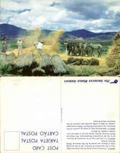(Ephemera) Original Pan Am promotional card, circa 1940, showing colour photo of the threshing of wheat along the Pan American highway in the mountains of Oaxaca (Mexico).